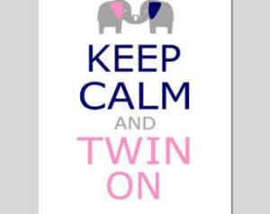 keep-calm-twins